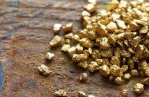Long Live Gold Manipulation