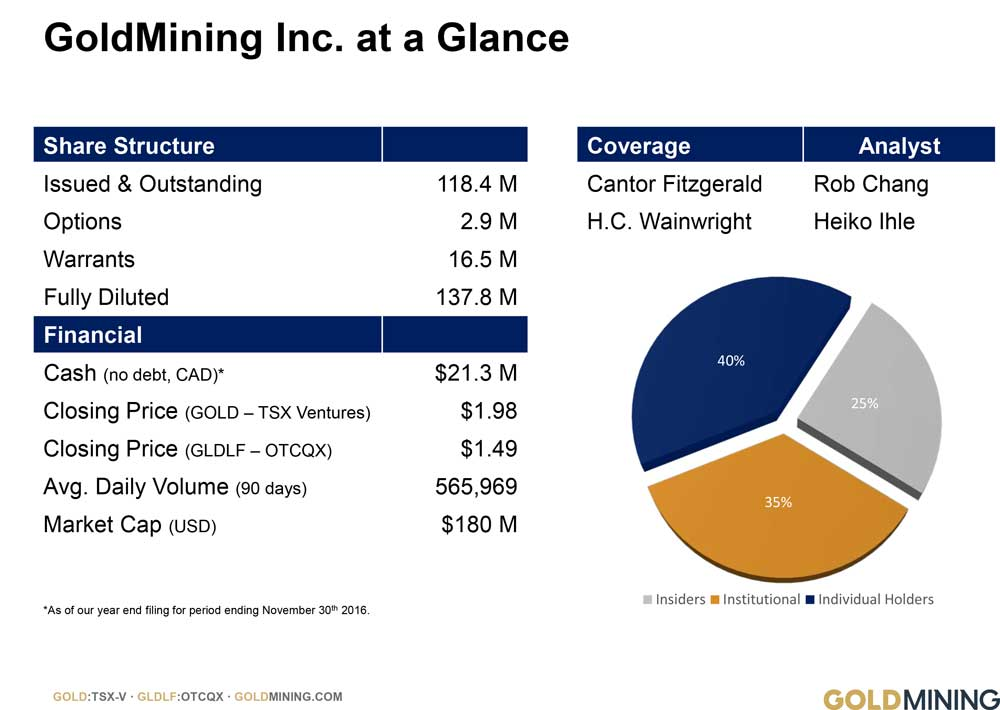 Gold Mining Inc at a Glance