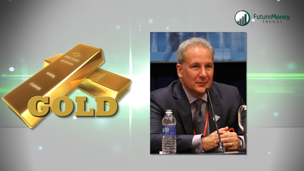 Gold Vs. Peter Schiff – VisionVictory