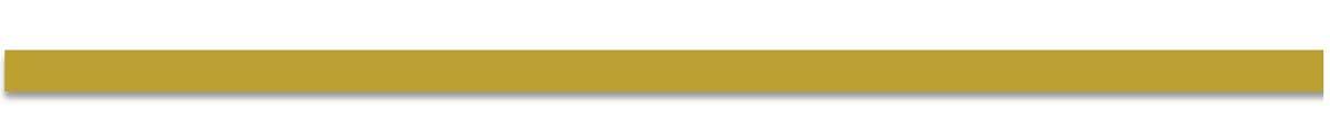 MX Gold Corp Header
