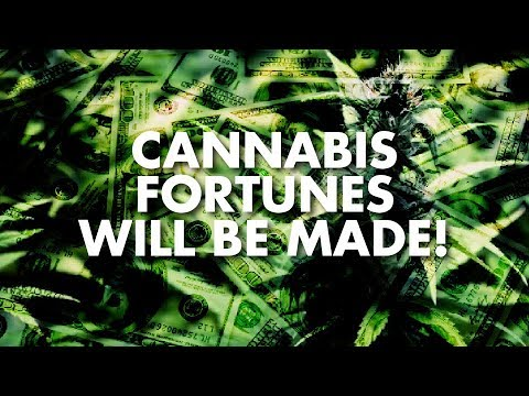 Cannabis Fortunes Will Be Made!