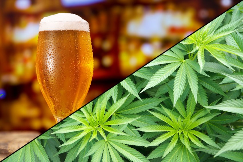 MARKETS GONE WILD! Budweiser Cannabis Deal Adds Fuel to Entire Industry